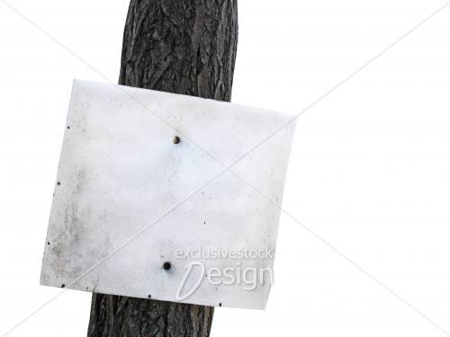 Affiche vide arbre isolé