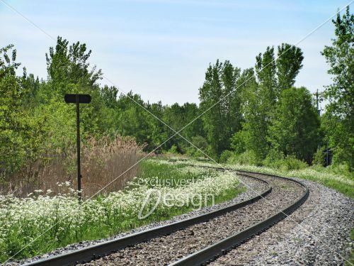 Chemin fer tournant nature affiche noire