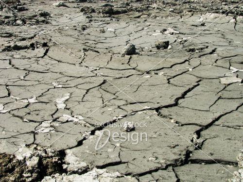 Craquelures terre humide fissurée