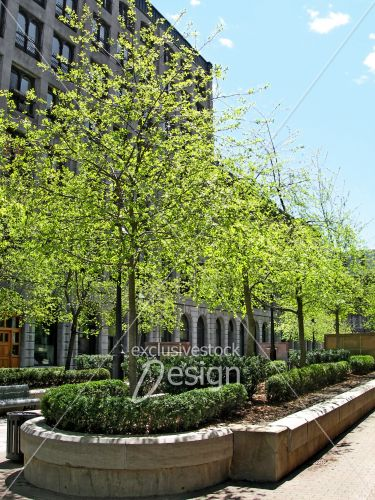 Banque d 39 image espace vert pr s d 39 immeubles dans la for Espace vert quebec