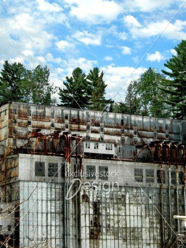 Immeuble industriel ruine et forêt