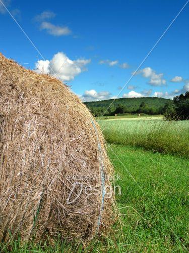 Motte foin champs vert colline ciel bleu