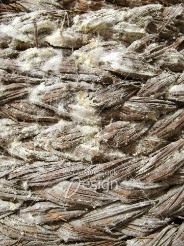 Osier bois tissés mousse