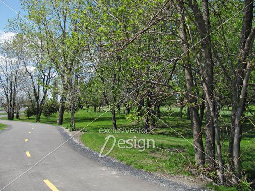 Piste cyclable près golf boisé vert