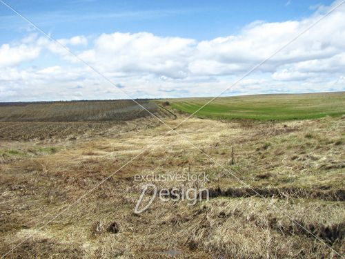 Terre cultiver ciel bleu foin herbes
