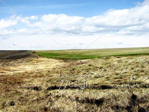 Terre cultiver montrant trois stades