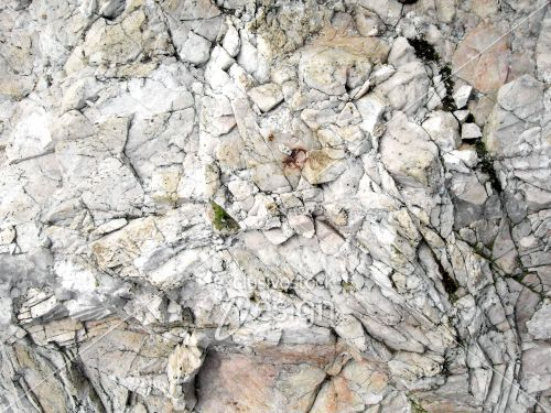 Texture roche blanche taches naturelles